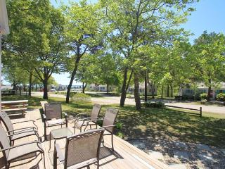 Perfect Cottage with Internet Access and Dishwasher - Hyannis Port vacation rentals