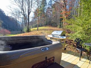 Firefly Haven-Pets Welcome, Hot Tub, Fireplace - Almond vacation rentals