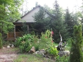 Cabin for Rent on Coe Island Lake - Bancroft vacation rentals