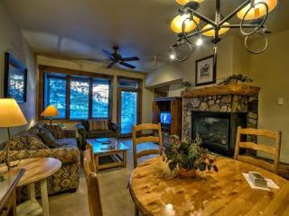 Best Amenities in Town! - Steamboat Springs vacation rentals