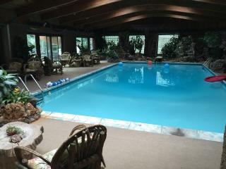 Indoor Pool, Sauna, Game Room With Billiards Table - Chicago vacation rentals