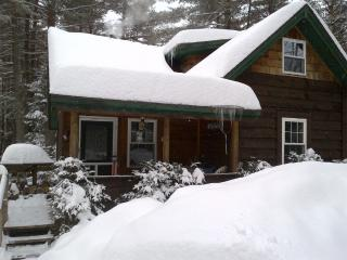 Gore Mountain Cabin, 8 min to North Creek, NY - Johnsburg vacation rentals