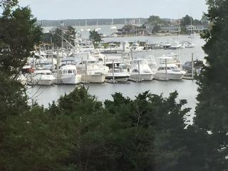 Waterfront Compound: 5 Br A/C Cape, Cottage w/Dock - Hyannis vacation rentals