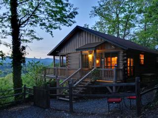 Stunning Mountain View Log Cabin - Ellijay vacation rentals
