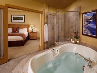 Top Conde Nast Fairmont Franz Klammer Pool - Telluride vacation rentals