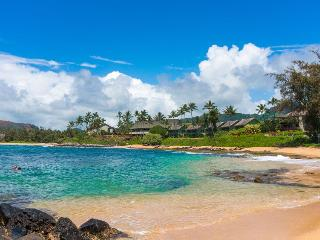 Gorgeous Beach Front Condo on the Coconut Coast - Kapaa vacation rentals