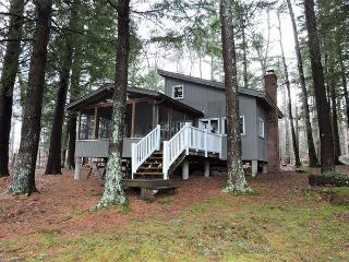 Adorable 2 bedroom House in Moultonborough - Moultonborough vacation rentals