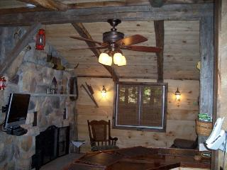 Vacation Logged Cabin with hot tub and fireplace - Kunkletown vacation rentals
