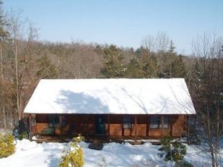 Massanutten Log Home w/Hot Tub - Indoor Water Park - Massanutten vacation rentals