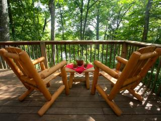 Rustic Cabin with Stone Fireplace - Winchester vacation rentals