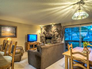 Ski In/Ski Out GORGEOUS - Steamboat Springs vacation rentals
