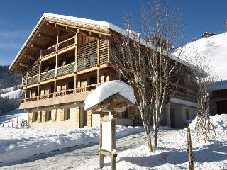 Chalet le 4 - Apartment 1 - Le Grand-Bornand vacation rentals