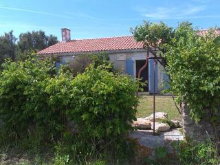 Maison Oléronaise, 3 chambres, proche de la plage - Saint-Georges d'Oleron vacation rentals