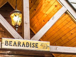 Bearadise Retreat -  Amazing cabin, Hot Tub & View - Ellijay vacation rentals