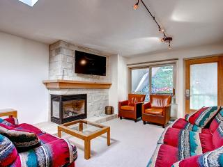 Inviting 2BR Aspen Condo w/Wifi, Fireplace & Gorgeous Mountain Views - Within Walking Distance of Everything Aspen Has to Offer! - Aspen vacation rentals