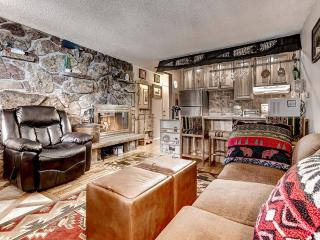 Exceptional 1BR Winter Park Condo w/Wifi & Fireplace - Just 2 Miles from the Ski Base of Winter Park! - Winter Park vacation rentals