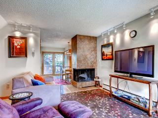 Reduced Summer Rates! Beautiful 2BR Silverthorne Condo – Close to Keystone, A-Basin, & Breckenridge w/Stunning Mountain Views. WiFi, Washer/Dryer and Cable! Year-Round Fun for Everyone! - Silverthorne vacation rentals
