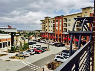 Beautifully Furnished 2BR Englewood Condo in the Heart of the Denver Tech Center w/Wifi & Private Balcony - Walking Distance to the Light Rail & More! - Englewood vacation rentals