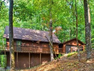 Enchanting 3BR Tiger Cabin w/Wifi, Private Deck & Lush Forest Views - Close Proximity to Hiking Trails, Lakes, Golf, Restaurants & North Georgia Mountain Attractions! - Tiger vacation rentals