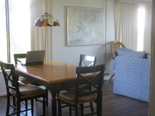 Oceanfront, Beachfront, Amazing Vacations - Saint Helena Island vacation rentals