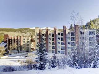 New Listing! Recently Updated 1BR Winter Park Ski-In/Ski-Out Condo w/Wifi, Private Balcony, Sensational Mountain Views & Wonderful Community Amenities - Easy Access to Outdoor Recreation, Dining, Shopping & More! - Winter Park vacation rentals