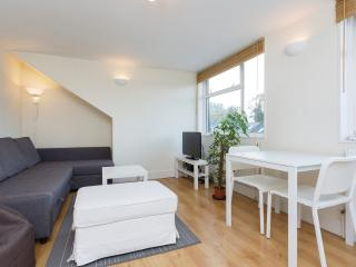 A bright two-bedroom flat in friendly Balham. - London vacation rentals