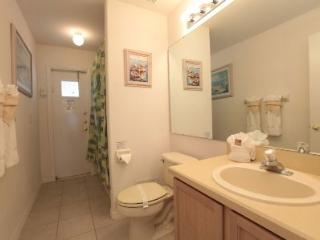 Greater Groves - 4 Bedroom Private Pool Home - CFH 54850 - Clermont vacation rentals