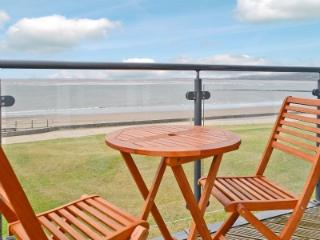 Perfect Condo with Internet Access and Satellite Or Cable TV - Llanelli vacation rentals