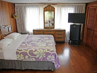 Hilo Town Studio with Wifi, Private Bath & Lanai - Hilo vacation rentals