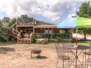Cozy House with Internet Access and Dishwasher - Buchanan Dam vacation rentals