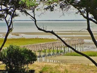 Closest 2BR to the Beach! Serene Hilton Head Island Condo; Renovated 2015 - Situated in Quiet, Nature Preserve Area near Beaches & Parks! - Hilton Head vacation rentals