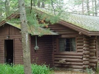 3 bedroom Cabin with Deck in Gaylord - Gaylord vacation rentals