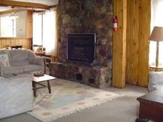Beautiful 3 bedroom Cabin in Gaylord - Gaylord vacation rentals