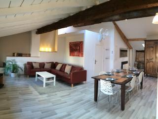 3 bedroom Apartment with Internet Access in Toulouse - Toulouse vacation rentals