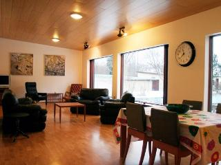 Cozy Country House - Hveragerdi vacation rentals