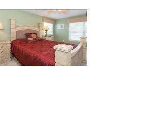 Luxury Home with easy access to Disney - Apopka vacation rentals