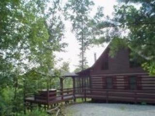 Blue Ridge Mountain Cabin, Blue Ridge Georgia - Image 1 - Blue Ridge - rentals