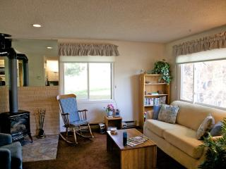 AFFORDABLE- Large 1 Bedroom Townhouse at Ski Area - Steamboat Springs vacation rentals