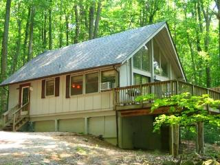 HOT TUB HEAVEN # 3  CABINS !  DOG FRIENDLY! - Front Royal vacation rentals
