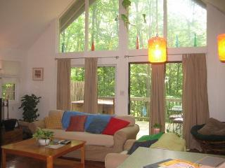 Wonderful Cabin with Deck and Internet Access - Front Royal vacation rentals