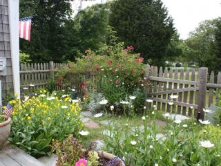 3 bedroom House with Deck in Harwich Port - Harwich Port vacation rentals