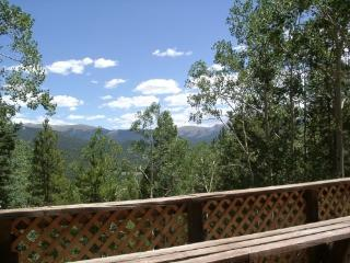 Comfortable House with Deck and Central Heating - Pitkin vacation rentals