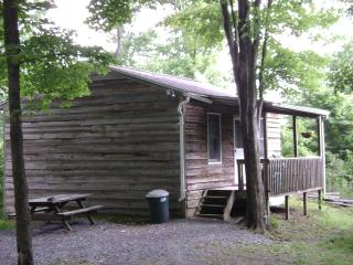 Cabins Raystown Lake, Juniata College, Penn State - Huntingdon vacation rentals