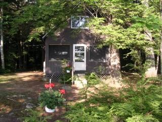 Private Maine Cottage / Boat Dock / Private Beach - Norridgewock vacation rentals
