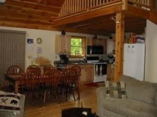 North Woods cottage, in Greenville,Moosehead Lake! - Greenville vacation rentals