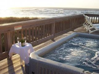 BEACH FRONT on Galveston's West Beach - Galveston vacation rentals