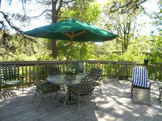 UPSCALE NEIGHBORHOOD / Biking & Tennis!!!! - Eastham vacation rentals