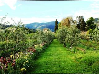 luxury apartments, garden, farm, Tuscany Villa - Sesto Fiorentino vacation rentals