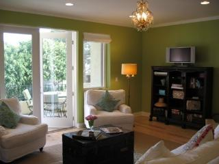 Luxury Beach Home:Fabulous for Families/Reunions! - San Clemente vacation rentals