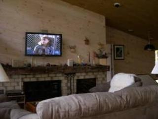 Stratton 4 Bedroom BIG Views Pets MAYBE - Bondville vacation rentals
